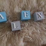 kocky s menom bledo modrá a sivá