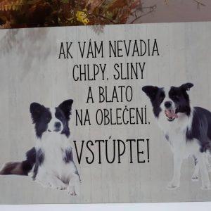 Pozor pes - kólia - ak vám nevadia chlpy