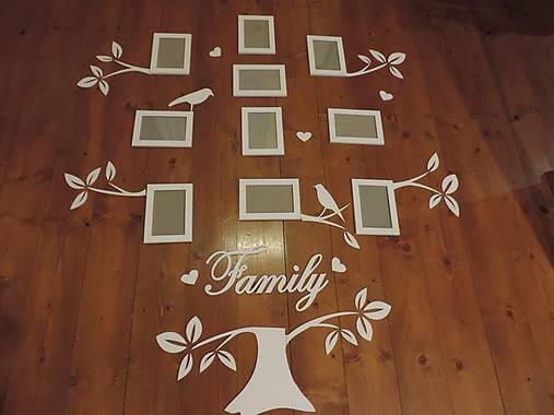 Strom rodiny DENI