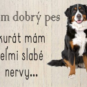 Som dobrý pes akurát mám veľmi slabé nervy...