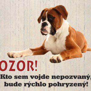 Pozor pes! Kto sem vojde nepozvaný, bude rýchlo pohryzený!